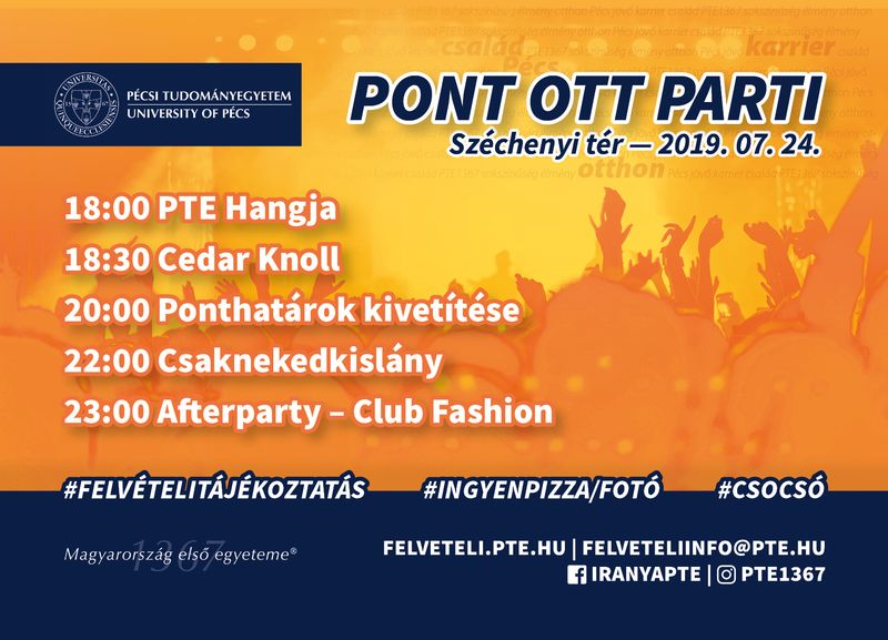 Pont Ott Party 2019